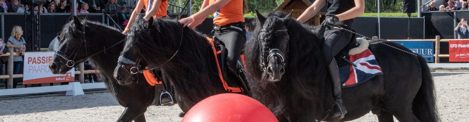 Paardenvoetbal (11)