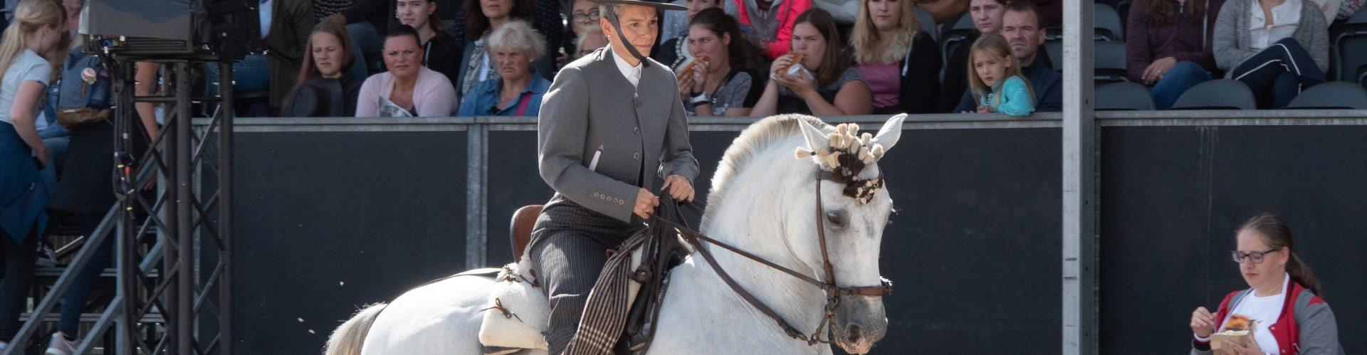 Spaanse paard (4)
