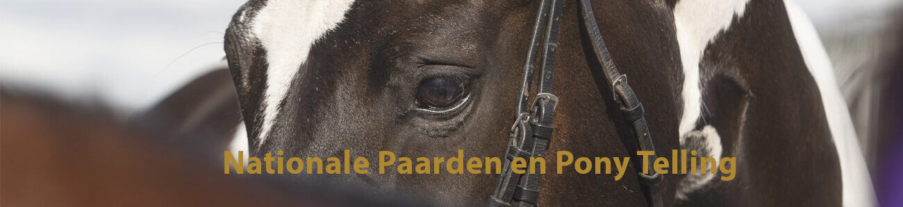 Header campagne Nationale Paarden Telling