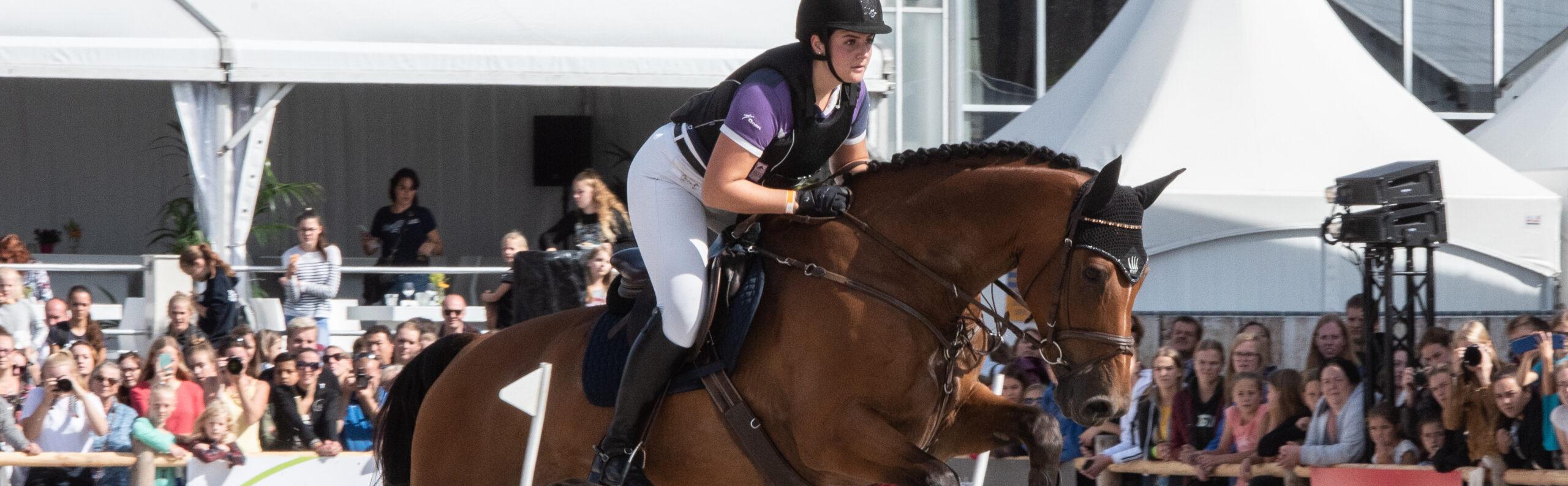 Hunter Equitation (10)